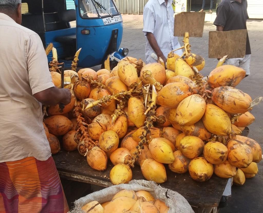 Karališkieji kokosai
